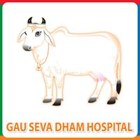 Cow Hospital