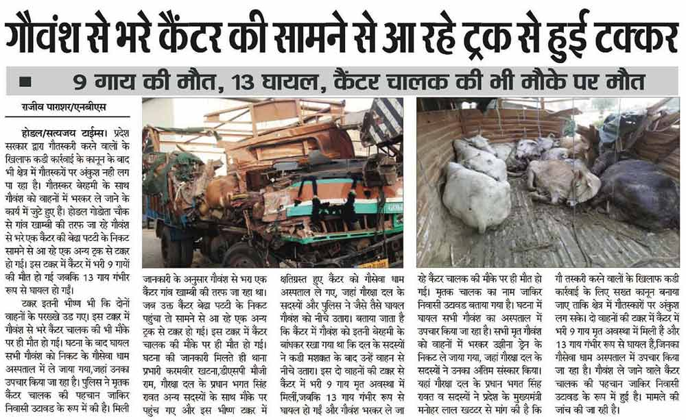 Cow Saved From Slaughter House